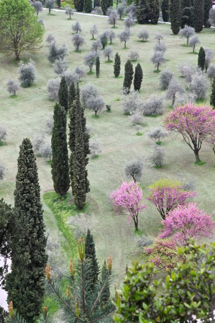 Garden near Bellagio, Lake Como