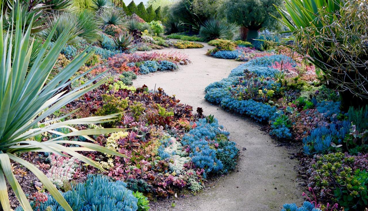 Attila Kapitani garden near Melbourne